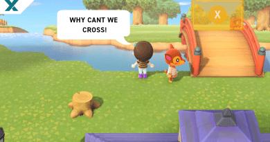 animal-crossing-zen-bridge-glitch